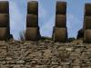 Krákorce v korune steny paláca